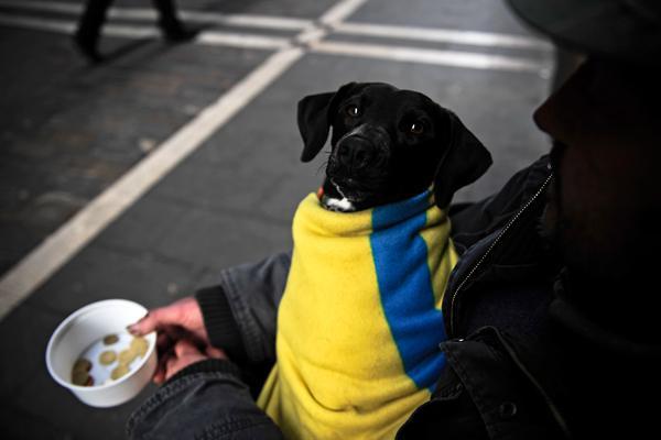 Скудные итоги независимости Украины: Киев скрыл реальные потери от разлада с Москвой - СМИ