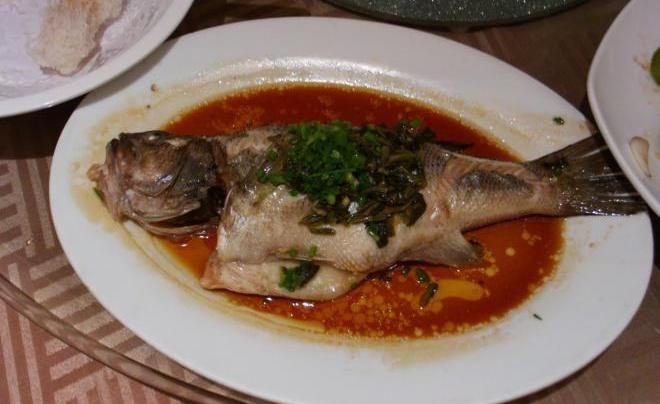 Рыба инь-ян