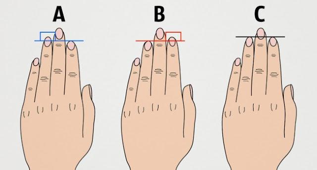 Что может рассказать о человеке длина его пальцев