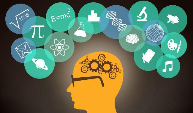 Вспомнить всё: учёные представили прибор, улучшающий память на 30 %