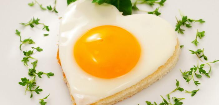 Определены уникальные свойства куриных яиц