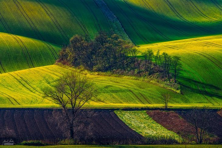 Моравия, Чехия