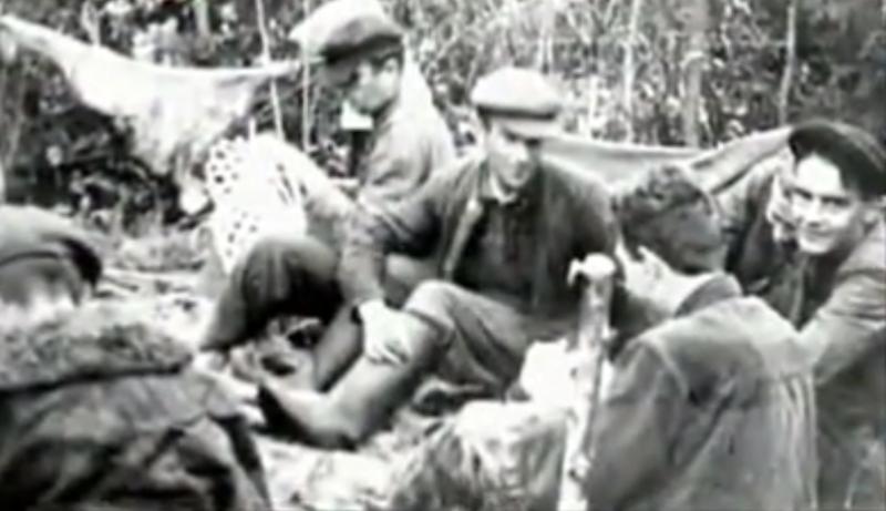 История предательства.Малоизвестная страница истории. Чёрный кот (Белоруссия) вторая мировая, вторая мировая война