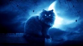 Приметы на ночь: что можно и что нельзя делать