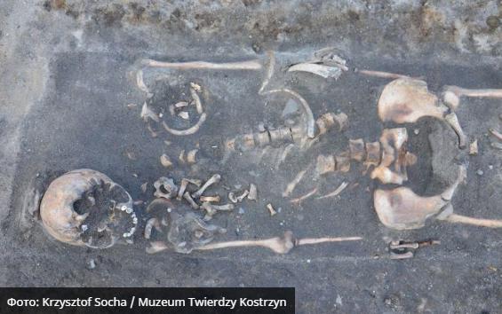 """В Польше найдены скелеты """"вампиров"""""""
