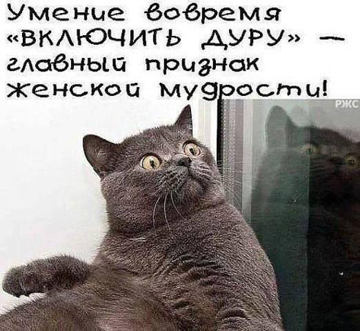 http://mtdata.ru/u10/photo798C/20687443866-0/original.jpg#20687443866