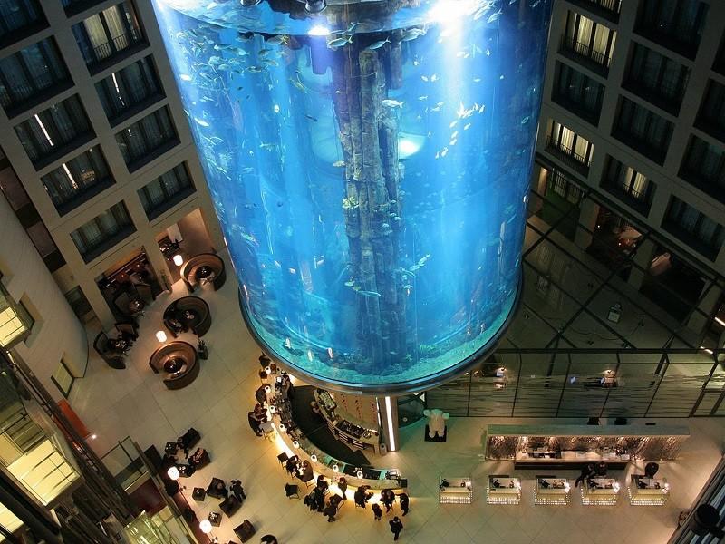 10. Аквариум «Aqua Dom», Германия история, лифт, мир, необычно, путешествия, факты