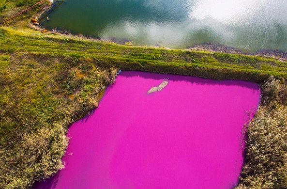 В Ставрополе появилось «гламурное озеро»
