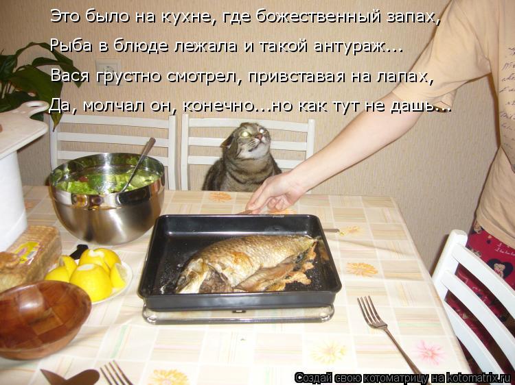Что приготовить завтра на ужин