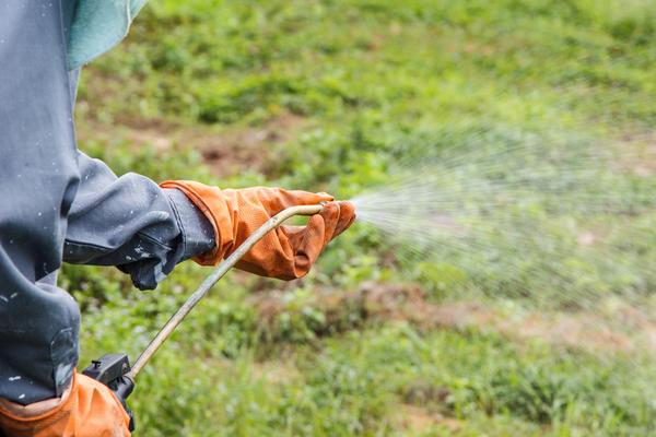 С помощью гербицида можно полностью очистить участок даже от трудноистребимых сорняков