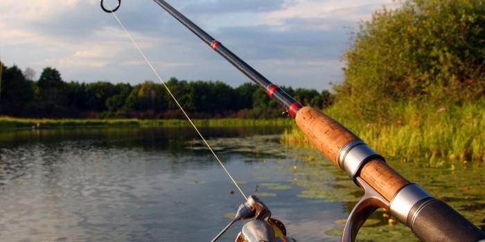 В Совете Федерации предложили сделать платной всю рыбалку