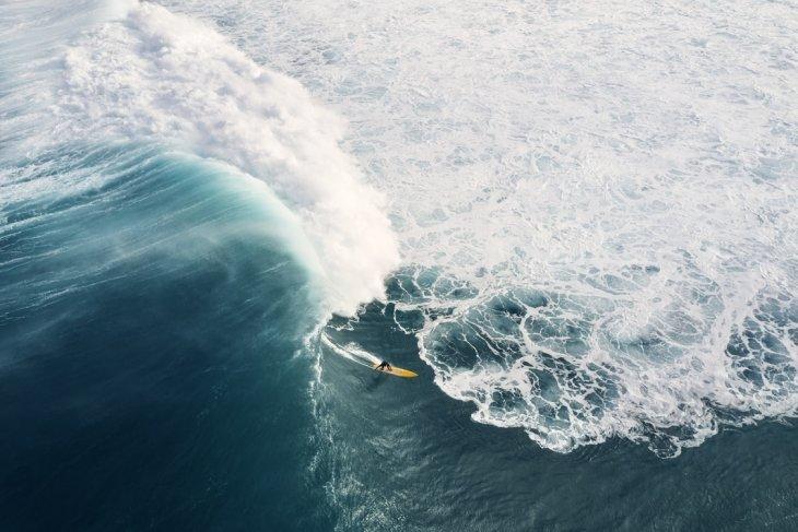 Серфингисты с высоты птичьего полета