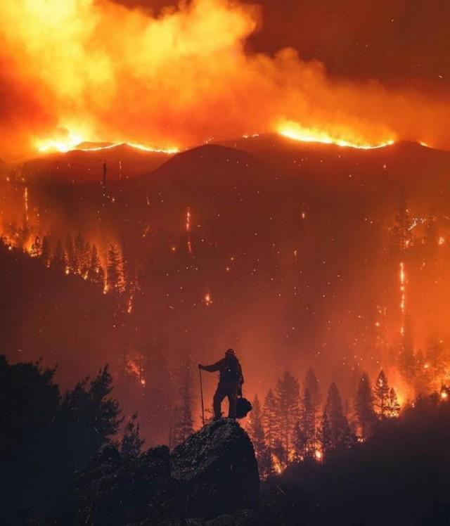 США раскрыли масштабы пожаров в России