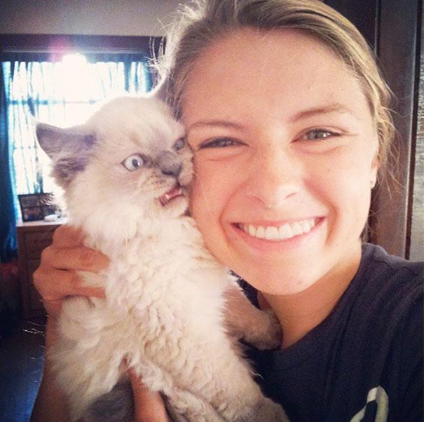 19 селфи с кошками-злюками, которые явно пошли не по плану
