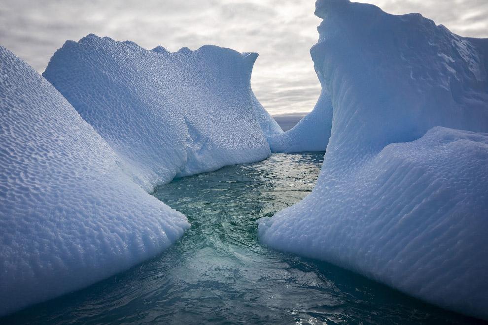 Антарктида в объективе