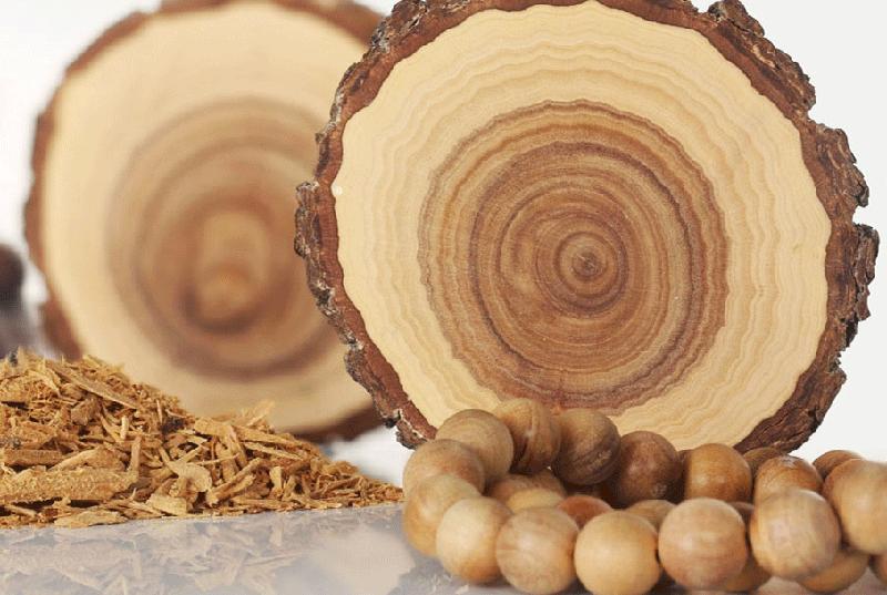 Сандал – 20 000 долларов за килограмм дерево, факты, фото