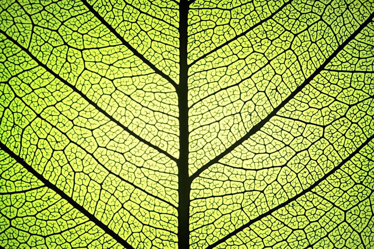 Синтезирована молекула, способная стать источником чистой энергии