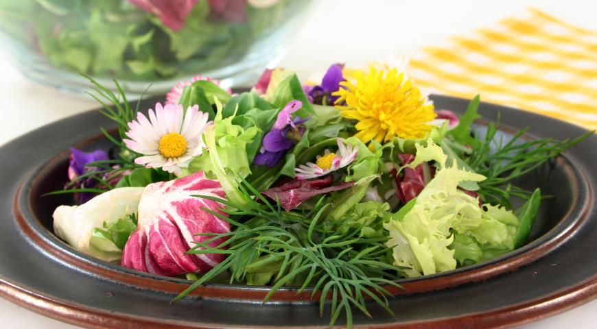 Зеленые салаты из диких растений