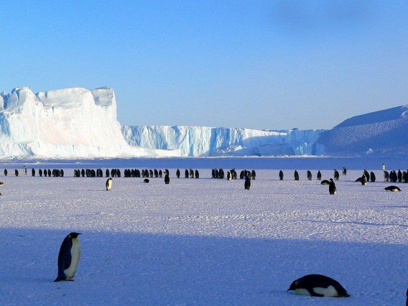 Украина готовится покорить Антарктиду