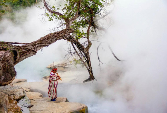 Уникальная кипящая река в дж…