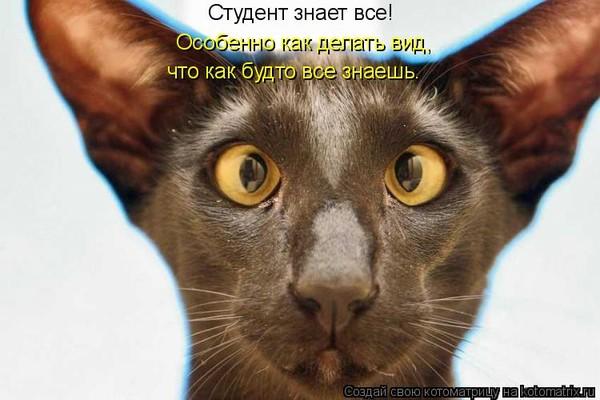 ПРОСВЕТЛЕНИЕ — ОПАСАЙТЕСЬ ПЕРЕДОЗА!!! :)))