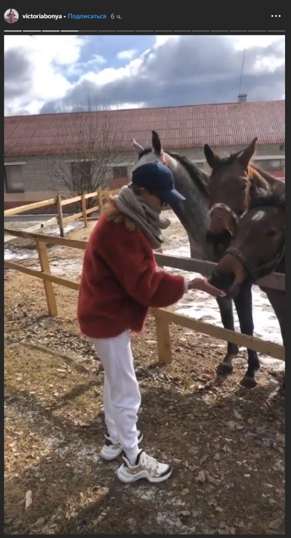 Виктория Боня покормила лошадей. Фото: instagram.com/victoriabonya