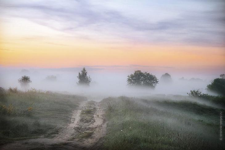 Фото Сергея Странника - июнь 2