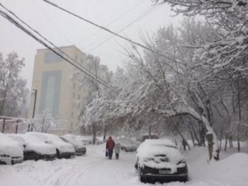 """Собянина призвали отменить плату за парковку из-за """"снегопада века"""""""