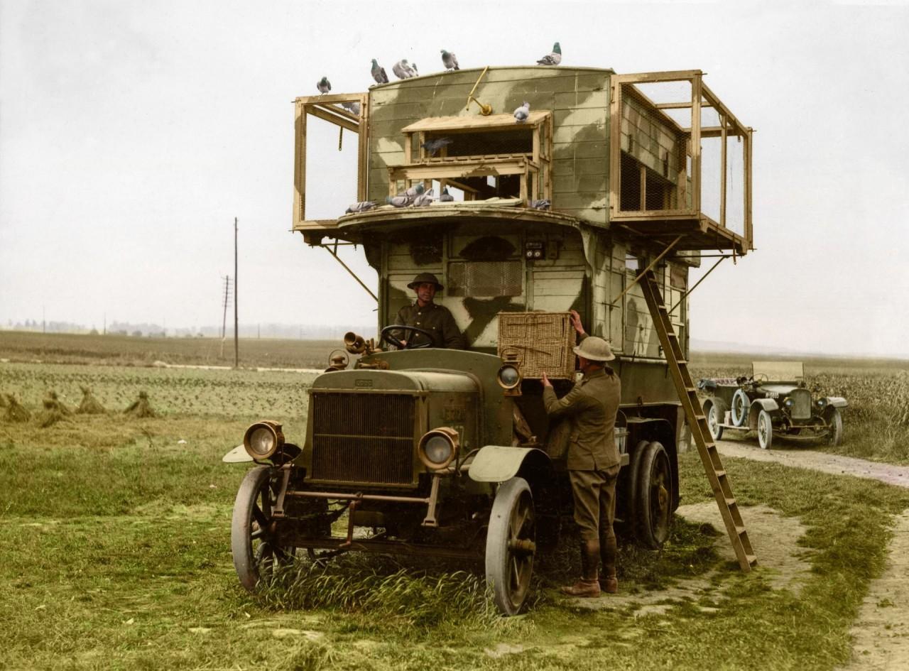 Грузовик, переоборудованный в голубятню для почтовых голубей архивное фото, колоризация, колоризация фотографий, колоризированные снимки, первая мировая, первая мировая война, фото войны
