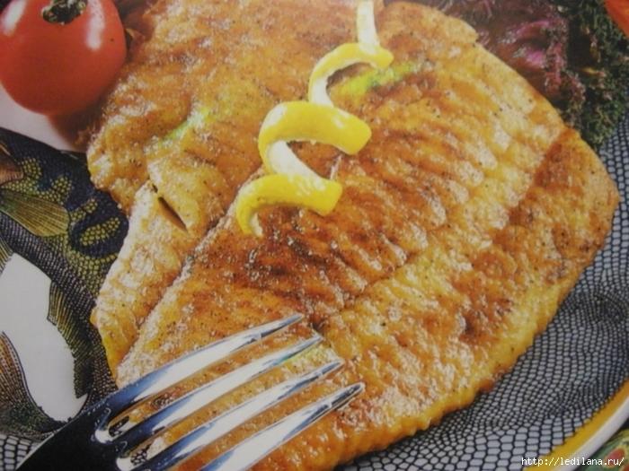 15 прекрасных рыбных рецептов