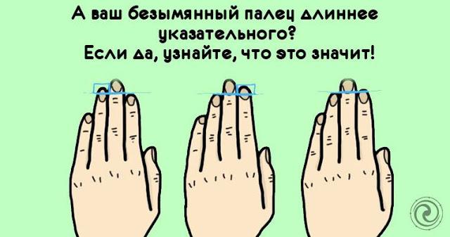А ваш безымянный палец длиннее указательного?! Если да, то узнайте, что это значит!