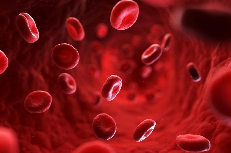 Полезно знать всем обладателям первой группы крови
