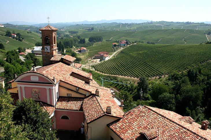 7 идей путешествий для любителей вина