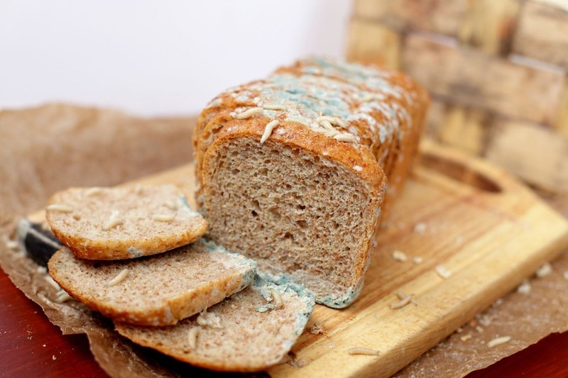 Плесень на хлебе: обрезать и съесть или выбросить?