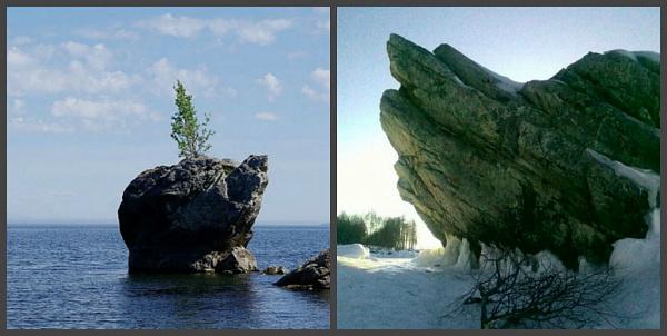 В Бурятии срубили священную берёзу на байкальской скале «Черепаха»