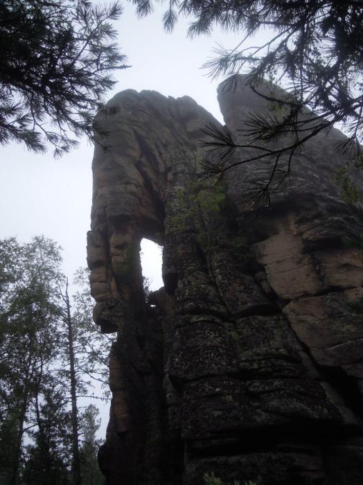 Голова мамонта с хоботом вблизи. / Фото:rubikonriver.narod.ru