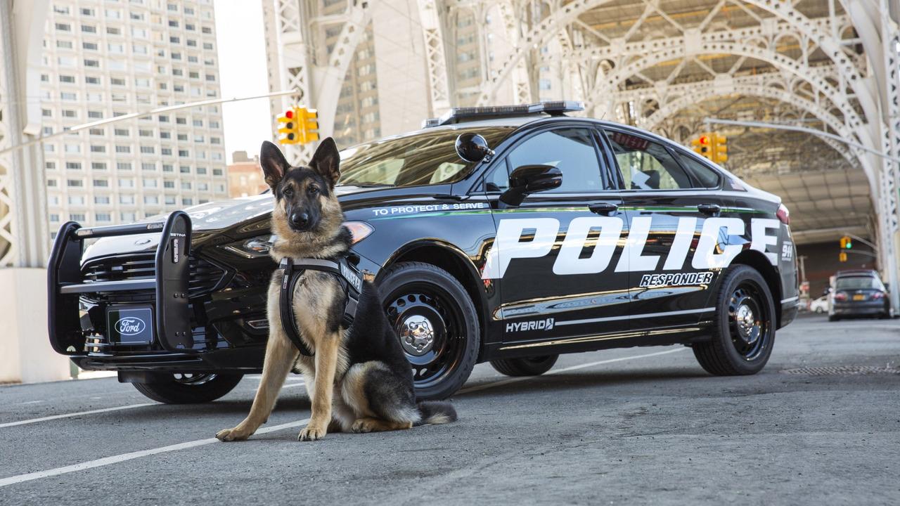 Ford представил гибридный полицейский автомобиль