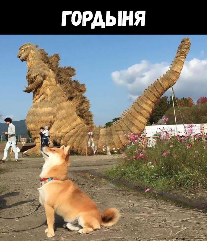 Даже смертные грехи могут быть наполнены милотой, если это собака)