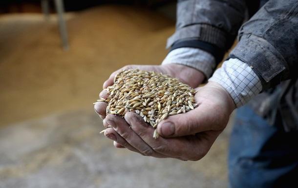 Украина исчерпала квоты на поставки пшеницы в ЕС
