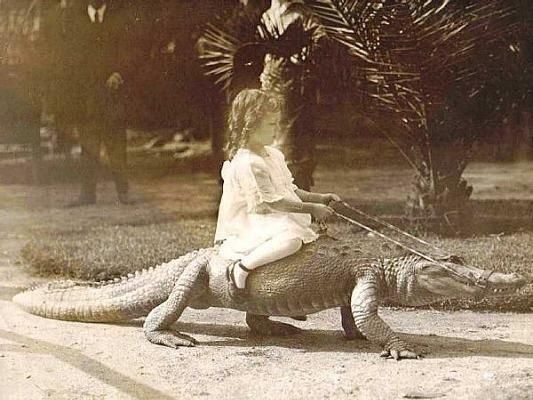 Дети верхом на аллигаторах: сейчас такого не увидите