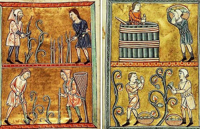 15 мифов о Средневековье, которые все привыкли считать правдой