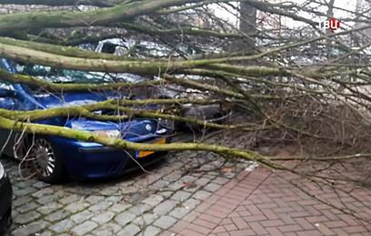 Жертвами урагана в Нидерландах стали три человека