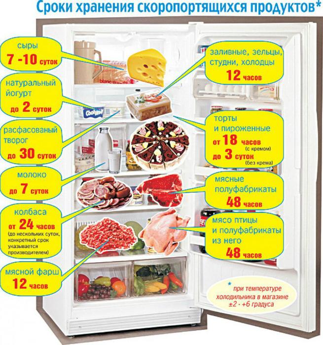 Хранение продуктов в холодильнике.   Фото: DonDay Шахты.
