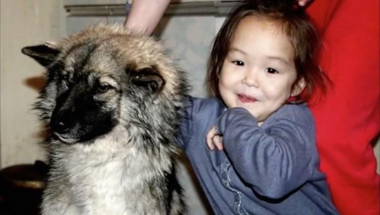 Эта 3-летняя малышка 11 дней блуждала по дикому лесу. Вот, кто все время был с ней девочка, собака