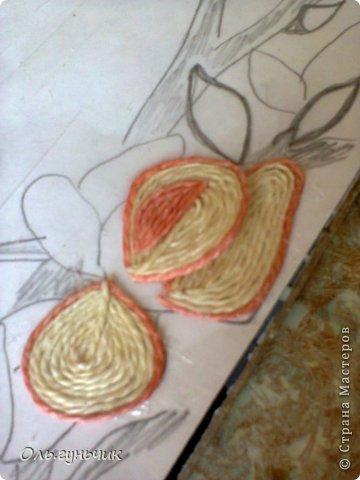 Картина панно рисунок Мастер-класс Моделирование конструирование Филигранный павлин МК Шпагат фото 27