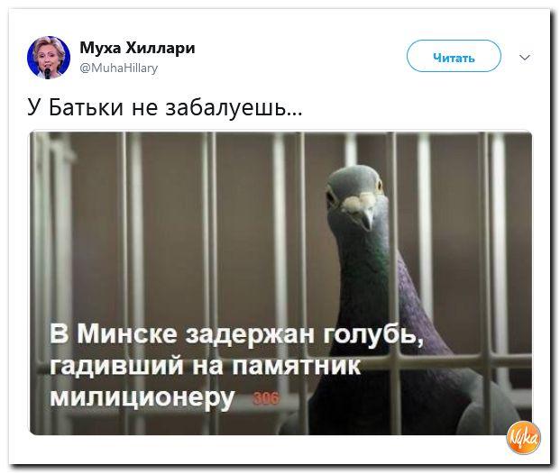 Соцсети жгут! С юмором о злободневном в ехидных скриншотах (политсатира)