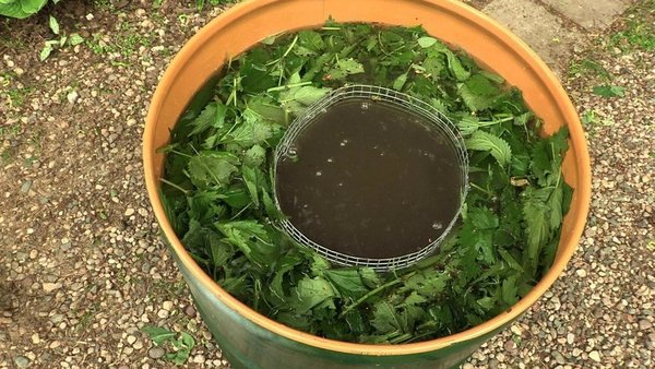 Зелёное удобрение из травы к…
