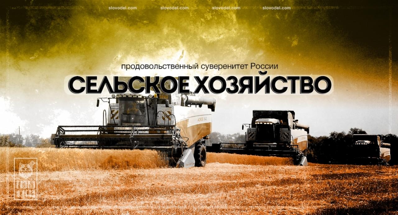 Путин сказал, народ сделал. Сельское хозяйство побило все рекорды