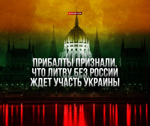 ПРИБАЛТЫ ПРИЗНАЛИ, ЧТО ЛИТВУ БЕЗ РОССИИ ЖДЁТ УЧАСТЬ УКРАИНЫ