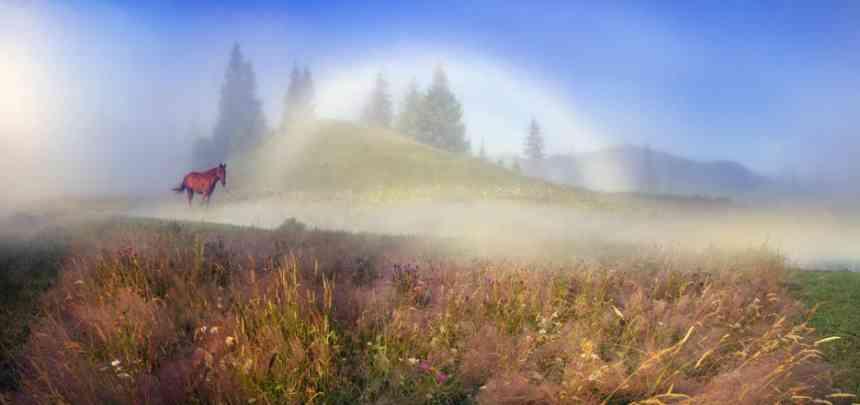 Природные явления, от которых у вас перехватит дыхание